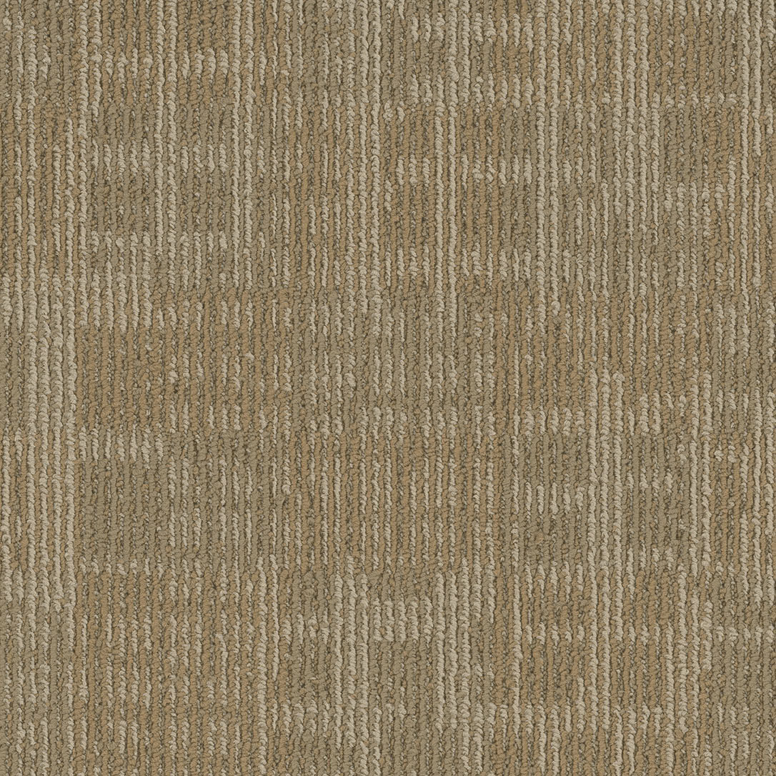 A close-up (swatch) photo of the Cache flooring product