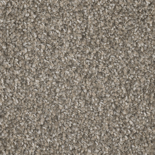Double Jump II in Earl Gray - Carpet by Engineered Floors