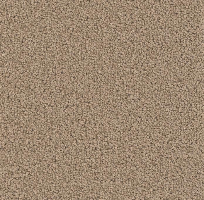 Broadcast Plus in Honey Beige - Carpet by Engineered Floors