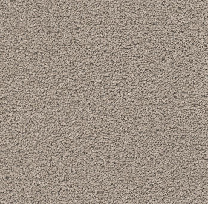 Broadcast Plus in Castle - Carpet by Engineered Floors