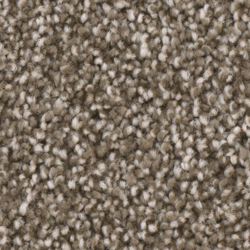 Windsurf I in Dove - Carpet by Engineered Floors