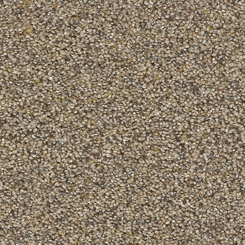 Awe Inspiring in Accent - Carpet by Engineered Floors