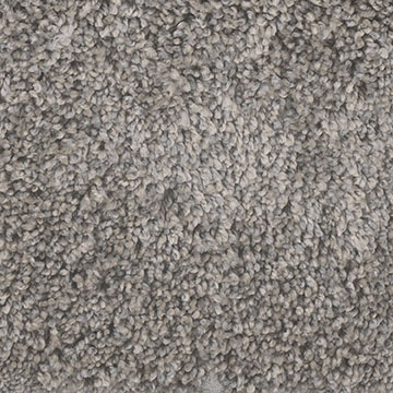 Knockout II in Lava - Carpet by Engineered Floors