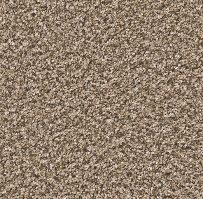 Ridgeline II in Bramble - Carpet by Engineered Floors