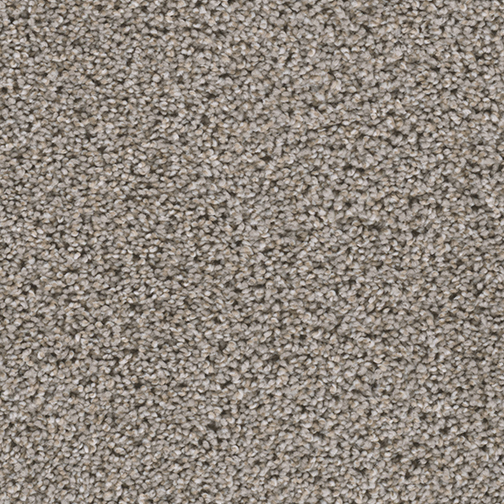 A close-up (swatch) photo of the Meadow Trail flooring product