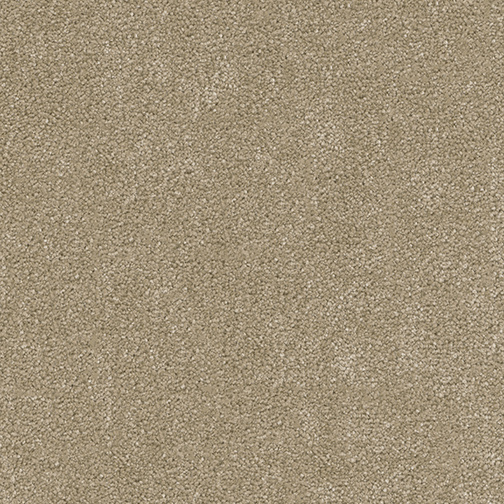 A close-up (swatch) photo of the Buff flooring product