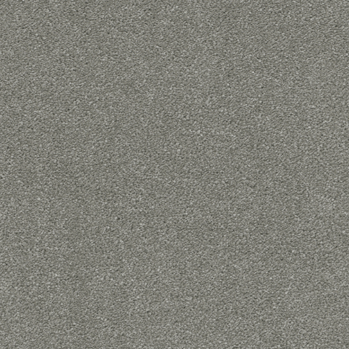 A close-up (swatch) photo of the Dark Platinum flooring product