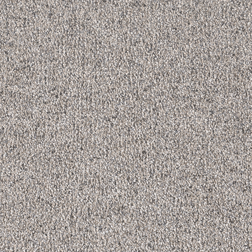 Easy Living III in Crackle Finish - Carpet by Engineered Floors