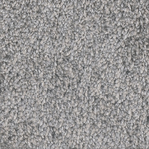 Casual Comfort I in Chicagoland - Carpet by Engineered Floors
