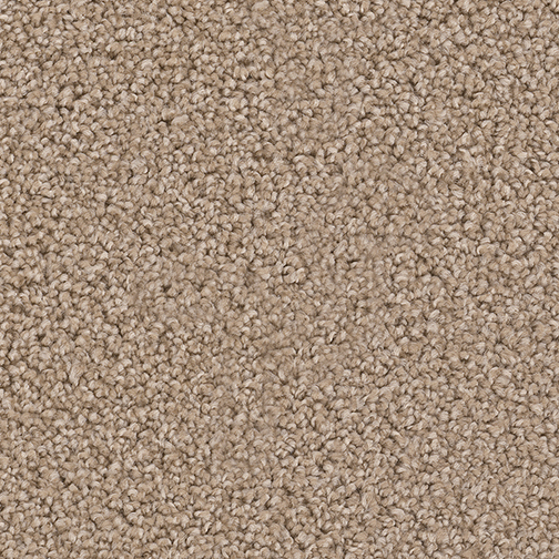 Exceptional in Adobe - Carpet by Engineered Floors