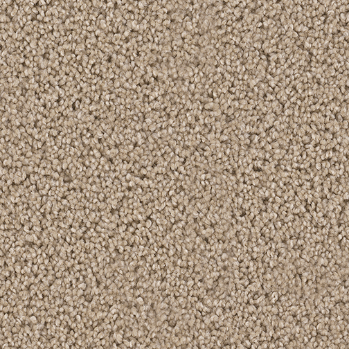 Exceptional in Wheat - Carpet by Engineered Floors