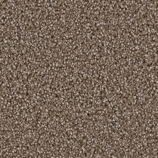 Exceptional in Tumbleweed - Carpet by Engineered Floors