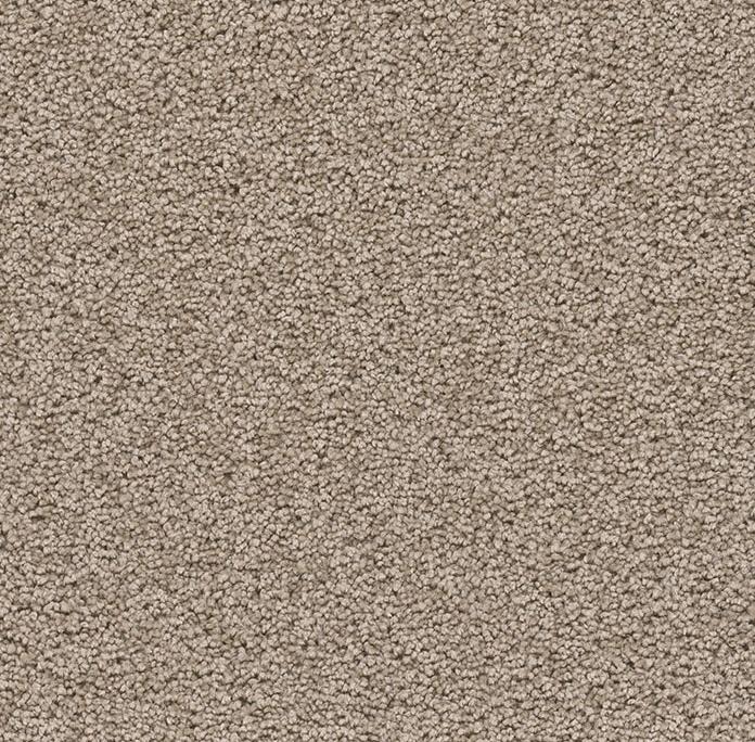 Sensational in Sandstone - Carpet by Engineered Floors