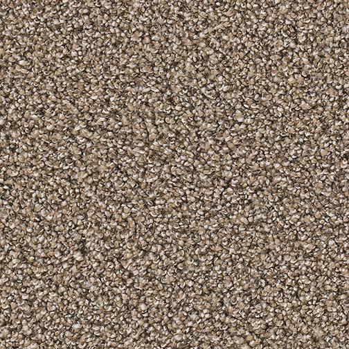 Outstanding in Five Star - Carpet by Engineered Floors