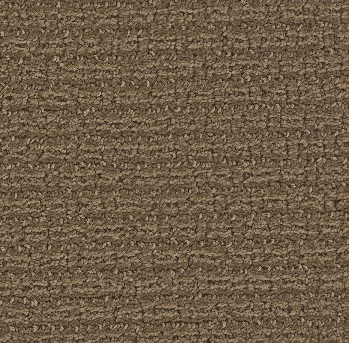 Concord in Boot Strap - Carpet by Engineered Floors