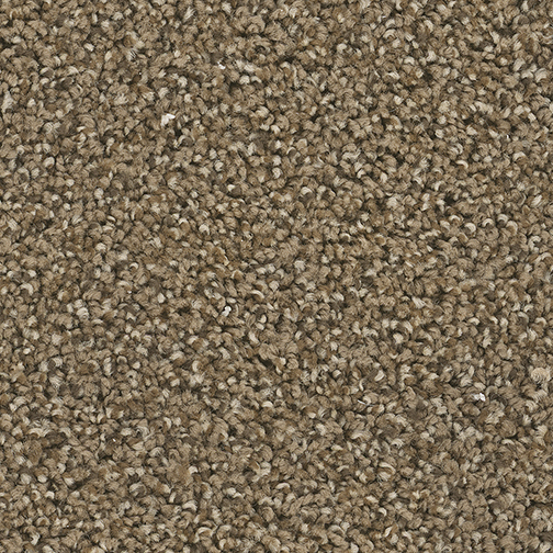 Cherry Creek in Boulder - Carpet by Engineered Floors