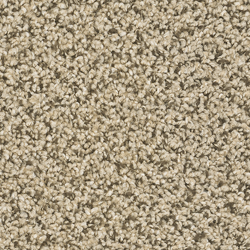 Cherry Creek in Fossil - Carpet by Engineered Floors