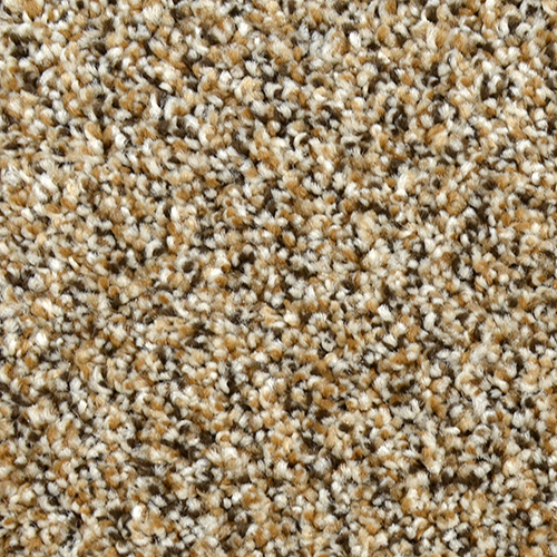 Residential Carpet Dream Weaver Products Carpets For Life